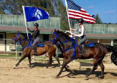color-guard-stables-horse-equestrian-center-training-lessons-boarding