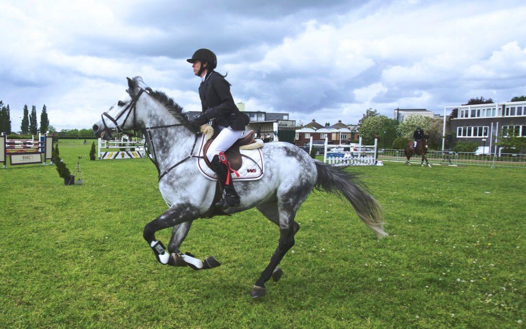 Quality Horsemanship Program Offers Unique Experiences for Students
