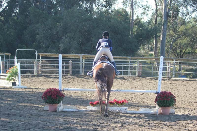 Equestrian Program Offers Riding and Boarding on School Campus