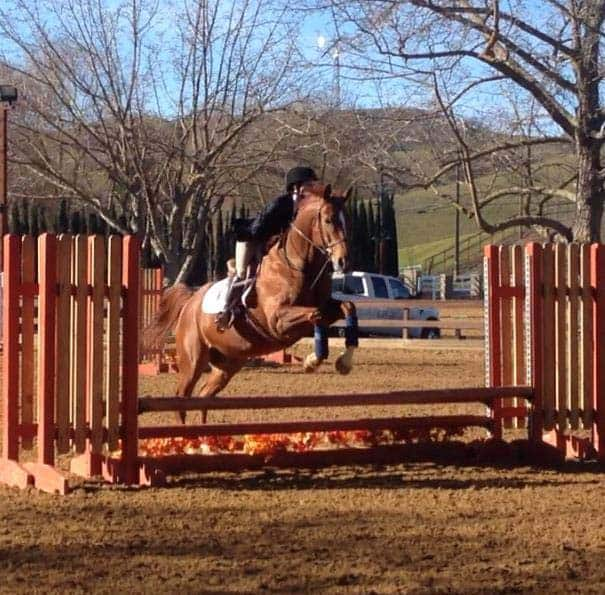 California School Offers One-Stop Shop with On-Campus Equestrian Program