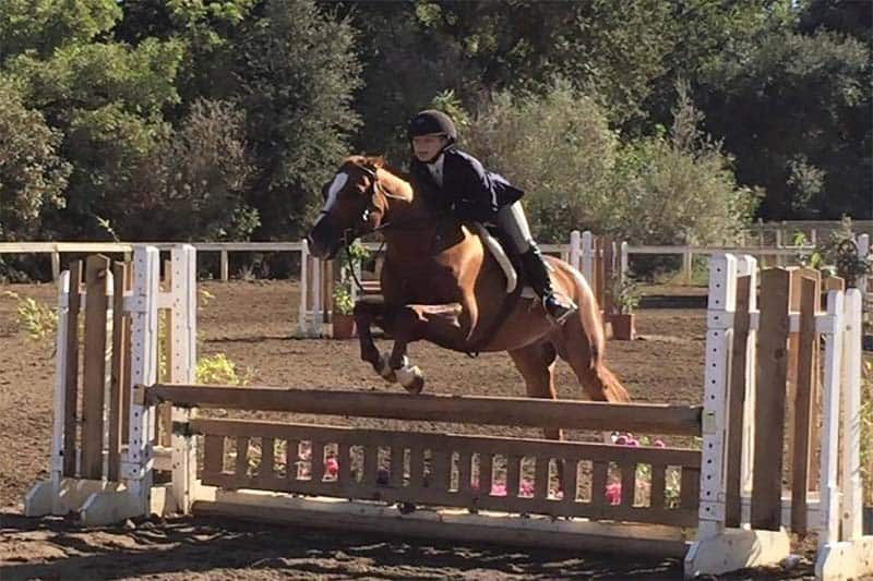 Bay Area Students Take Part in Equestrian Training Program
